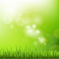 Green Background With Blur And Grass