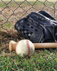 Baseball, glove, and bat in a field next to a chain-link fence