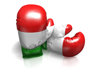 BOXING GLOVES ITALY