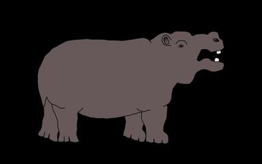 wild animal - hippo, vector