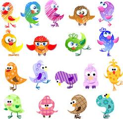 In de dag Vogels, bijen Прекрасные птицы для вашего дизайна