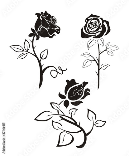 """""""Rose silhouette"""" Stock image and royalty-free vector ..."""