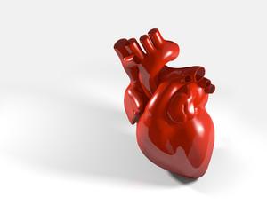 Modell eines menschlichen Herzens