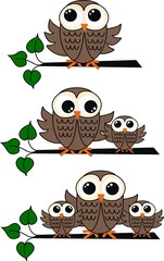 three different owl illustrations