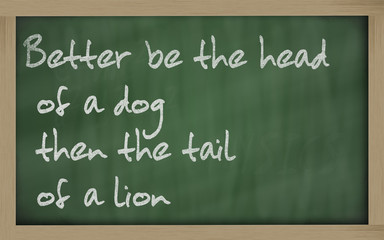 """  Better be the head of a dog then the tail of a lion "" written"