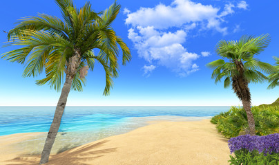Beach, palms and flowers