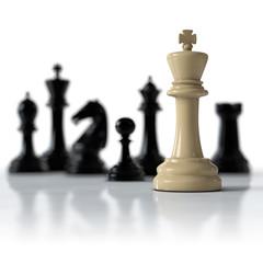 Schachfiguren - weisser König allein gegen alle