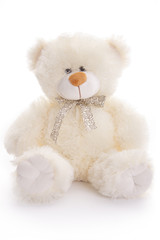 Bear, toy