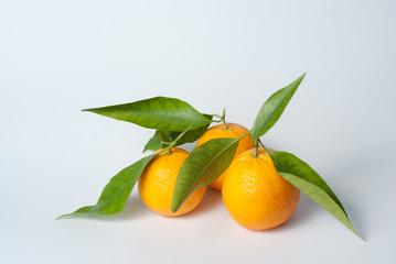 três laranjas