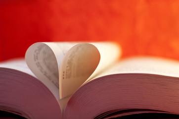 livre cadeau de saint Valentin