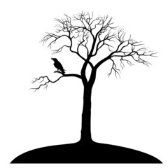 silhouette ravens on tree isolated