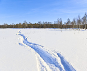 Wall Mural - Twisting trace of a snowmobile on a snow-covered field