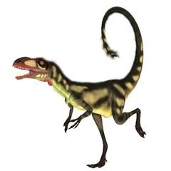 Dilong Dinosaur01
