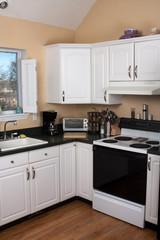 Clean Contemporary Kitchen Interior