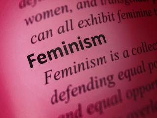 Definition: Feminism