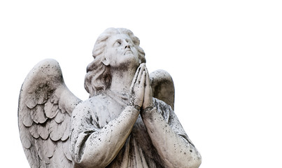 statue of the angel in white background