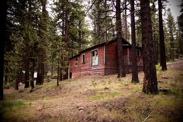 Old abandoned spooky cabin in forest