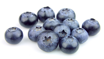 Wood berries of a bilberry