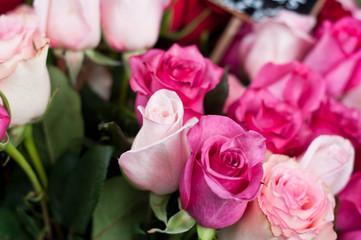 roses chez le fleuriste