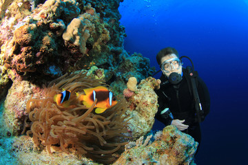 Clownfishes and Scuba Diver