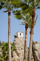 Belfry behind Palm Trees,  Alicante, Spain.