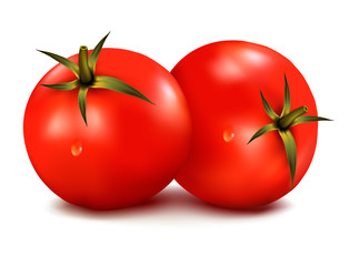 Two fresh tomatoes. Vector illustration.