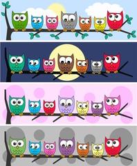 owl headers