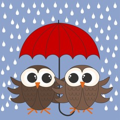 owls with a umbrella