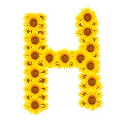 alphabet H , sunflower isolated on white background