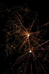 Firework against black sky
