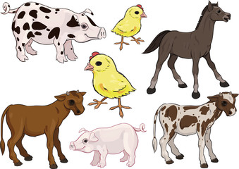Baby farm animals set