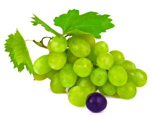 grape berries isolated on white background