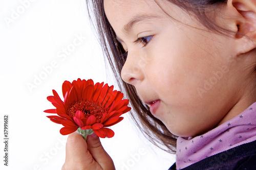 enfant qui sent le parfum d 39 une fleur rouge photo libre de droits sur la banque d 39 images. Black Bedroom Furniture Sets. Home Design Ideas