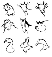 farm animals collection of icons