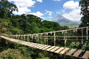 Brücke im Dschungel