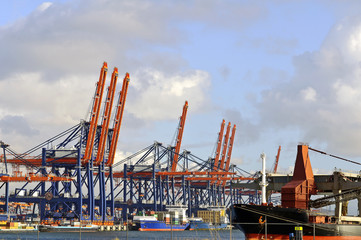 shipping industry in the port of rotterdam