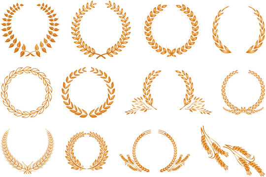 Laurel wreath pattern isolated on white