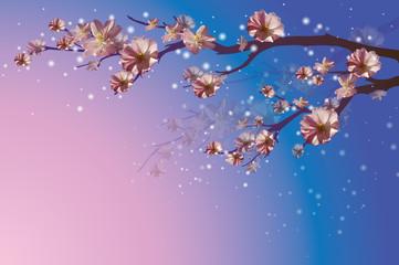 Spring branch floowers background