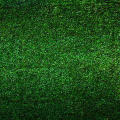 Artificial Grass leaf background