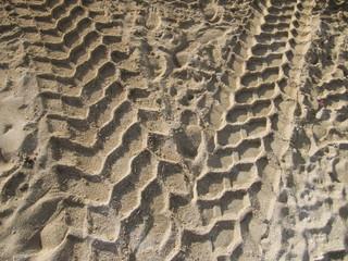 Cruce de huellas en la arena.