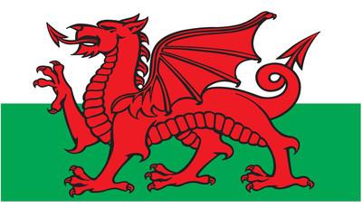 Fototapeta Welsh Flag obraz