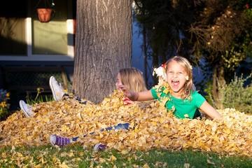 Raking the Leaves