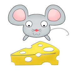 little mouse watching cheese isolated on white