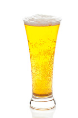 light beer with the foam in a tall glass isolated on white