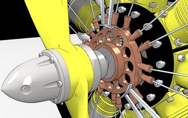 Radial Engine Cylinder