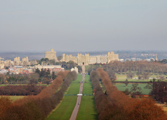 Wall Mural - The Long Walk and Windsor Castle in Winter