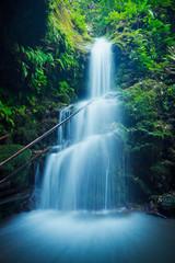 Wall Mural - Beautiful Lush Waterfall in Hawaii
