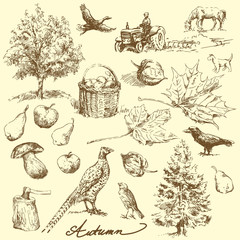 autumn-hand drawn set