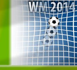 WM 2014 - GOAL!