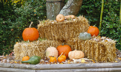 Autumn Display of Straw and Pumpkins